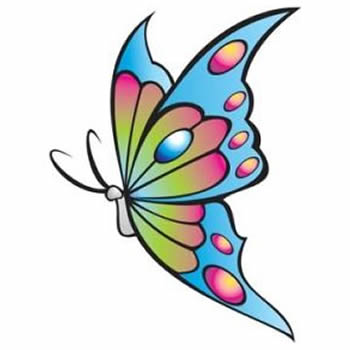Pillangó csoport